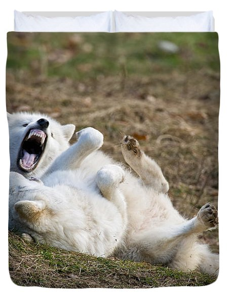 Duvet Cover featuring the photograph Playful Arctic Wolves by Wolves Only