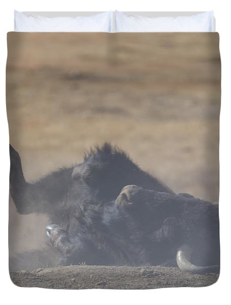 American Bison Playing In The Dirt At Custer State Park South Dakota Duvet Cover