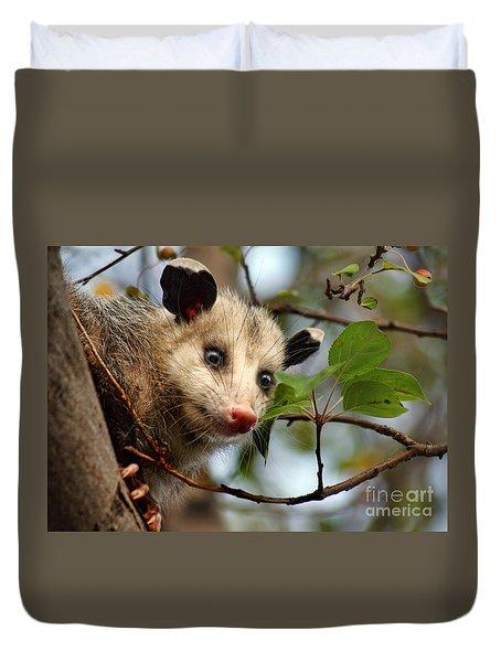 Playing Possum Duvet Cover by Nikolyn McDonald