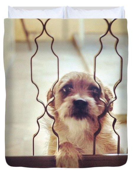 Please Let Me In! Duvet Cover