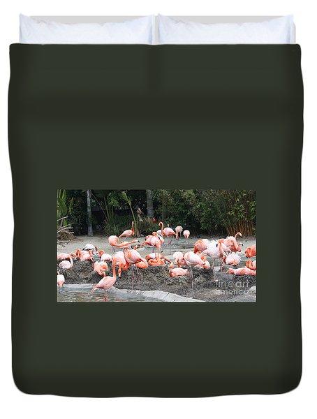 Plenty Of Pink Duvet Cover by John Telfer