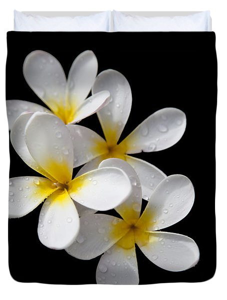 Duvet Cover featuring the photograph Plumerias Isolated On Black Background by David Millenheft