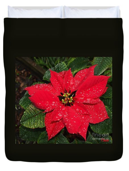 Poinsettia - Frozen In Time Duvet Cover