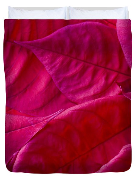 Poinsettia Leaves 1 Duvet Cover by Rich Franco