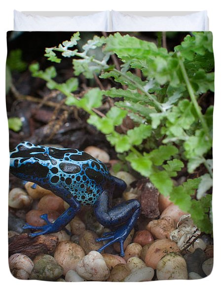 Poison Dart Frog Duvet Cover by Carol Ailles