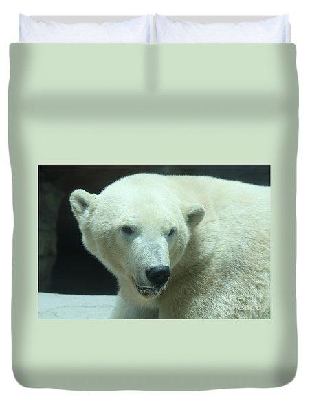 Polar Bear Head Shot Duvet Cover by John Telfer