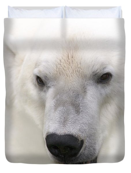 Polar Bear Portrait Duvet Cover by Heiko Koehrer-Wagner