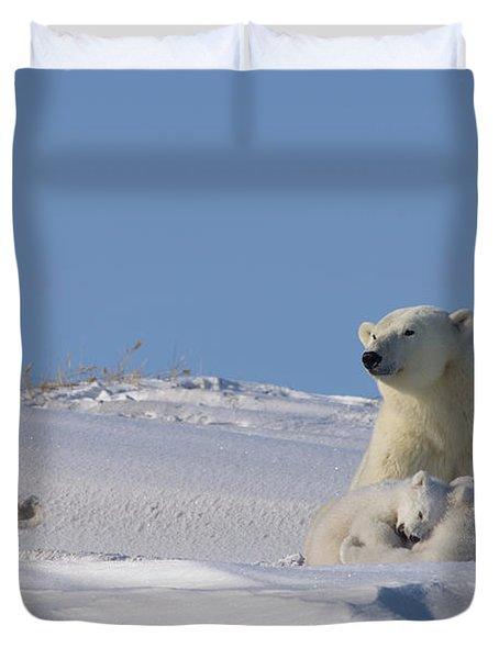 Polar Bear Sits Outside Her Den Duvet Cover