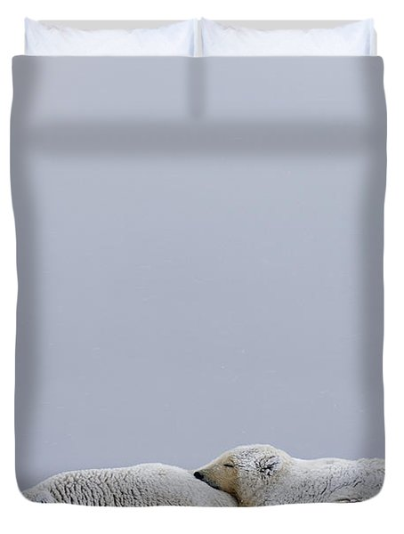 Polar Bear Sow With Cub Resting Duvet Cover