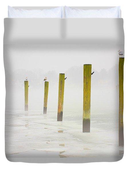 Poles Duvet Cover by Karol Livote