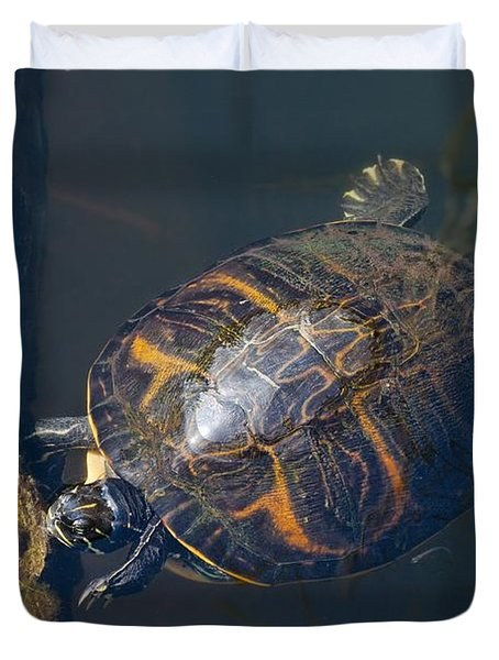 Pond Slider Turtle Duvet Cover by Rudy Umans