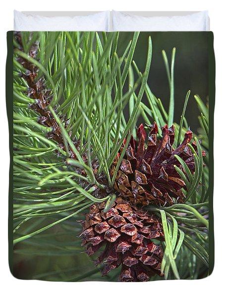 Ponderosa Pine Cones Duvet Cover