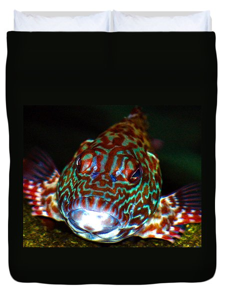 Poopaa Hawaiian Hawk Fish Duvet Cover