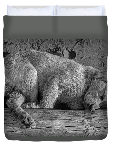 Pooped Puppy Bw Duvet Cover by Steve Harrington