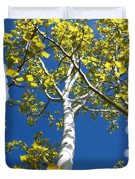 Poplar Tree In Spring  Duvet Cover by Will Borden