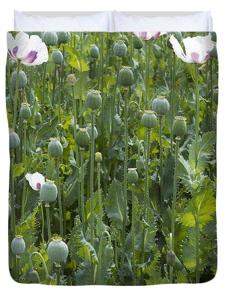Poppy Field Duvet Cover by Michal Boubin