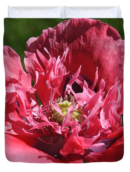 Poppy Pink Duvet Cover by Jim Hogg