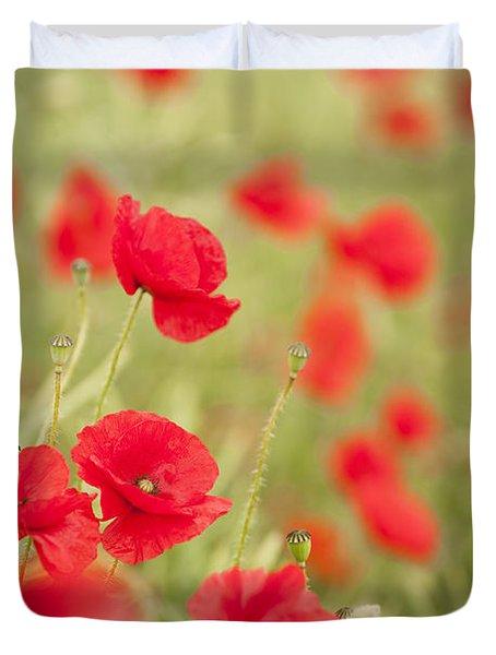 Poppy Red Duvet Cover by Anne Gilbert