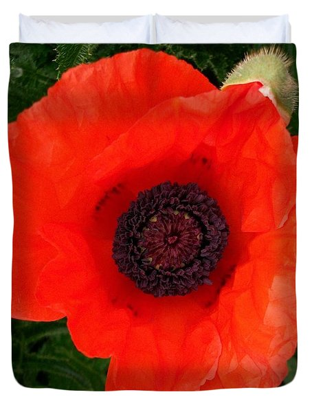 Poppy Of Remembrance  Duvet Cover