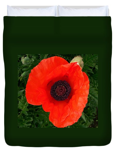 Duvet Cover featuring the photograph Poppy Of Remembrance  by Sharon Duguay