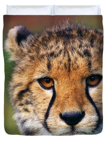 Duvet Cover featuring the photograph Portrait Of A Cheetah Cub by Nick  Biemans