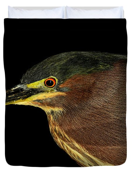 Portrait Of A Green Heron Duvet Cover