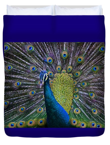 Portrait Of A Peacock Duvet Cover