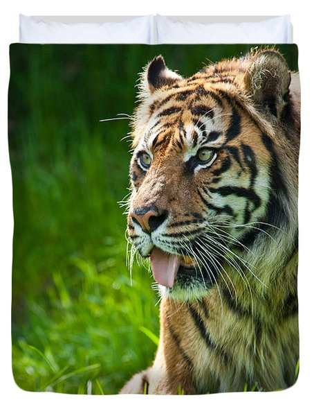 Duvet Cover featuring the photograph Portrait Of A Sumatran Tiger by Jeff Goulden
