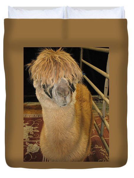 Portrait Of An Alpaca Duvet Cover by Connie Fox