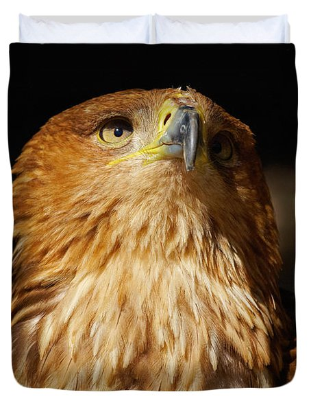 Portrait Of An Eastern Imperial Eagle Duvet Cover