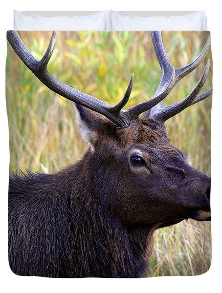 Portrait Of An Elk Duvet Cover