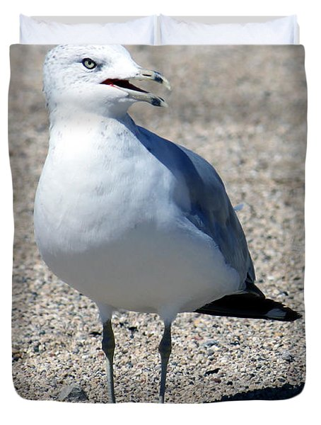 Duvet Cover featuring the photograph Posing Gull by Debbie Hart