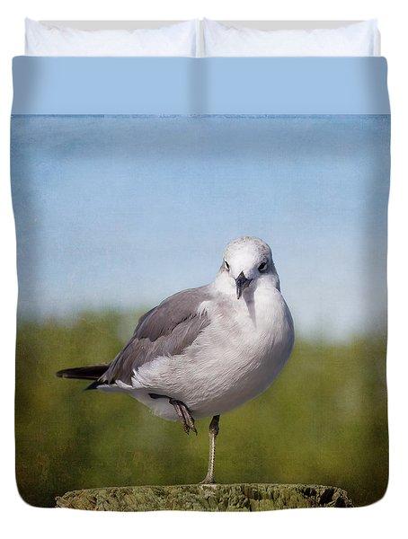 Posing Seagull Duvet Cover by Kim Hojnacki