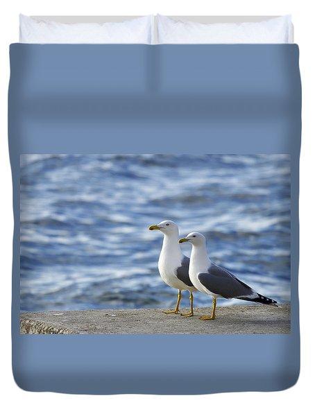 Posing Seagulls Duvet Cover