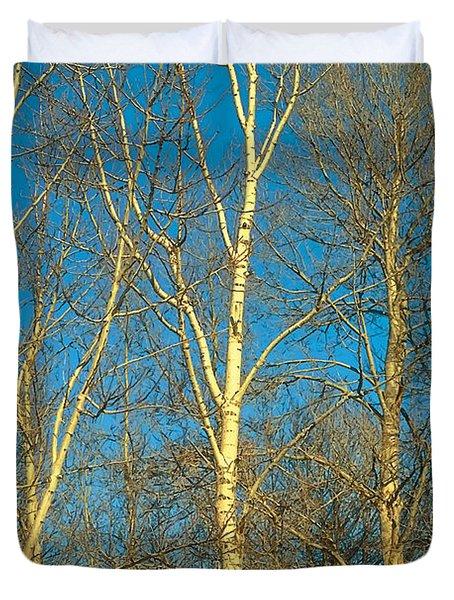 Prairie Autumn 9 Duvet Cover by Terry Reynoldson