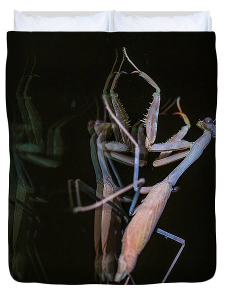 Praying Mantis 2 Duvet Cover by Angela A Stanton
