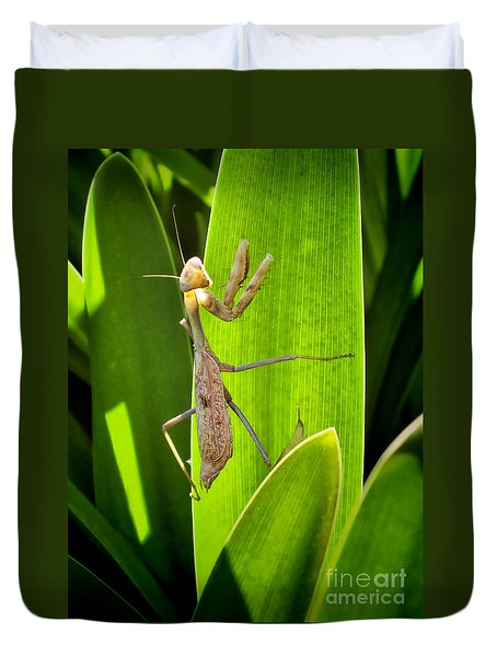Duvet Cover featuring the photograph Praying Mantis by Kasia Bitner