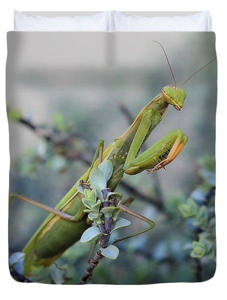 Praying Mantis Duvet Cover