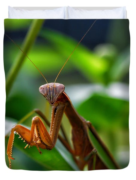 Duvet Cover featuring the photograph Praying Mantis by Thomas Woolworth