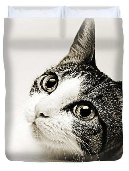 Precious Kitty Duvet Cover