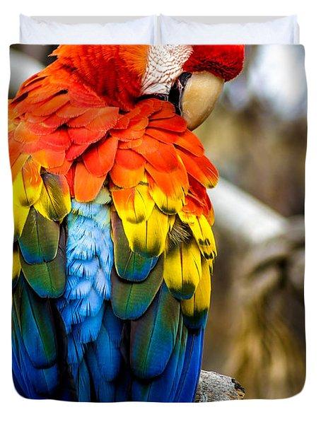 Preening Scarlet Macaw Duvet Cover