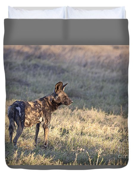 Duvet Cover featuring the photograph Pregnant African Wild Dog by Liz Leyden