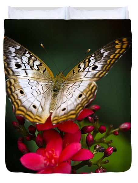 Pretty Little Butterfly  Duvet Cover by Saija  Lehtonen