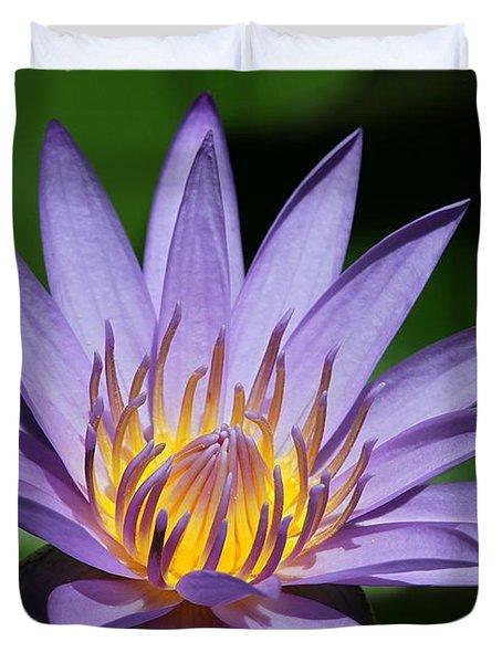 Pretty Purple Petals Duvet Cover by Sabrina L Ryan