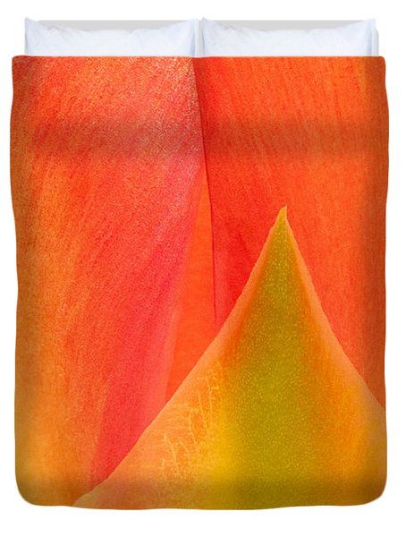 Duvet Cover featuring the photograph Prickly Pear Flower Petals Opuntia Lindheimeni In Texas by Dave Welling