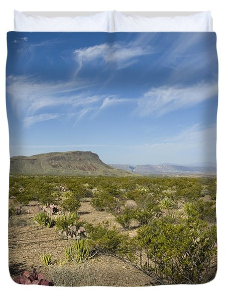 Prickly Pear In Chihuahuan Desert, Texas Duvet Cover