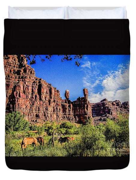 Private Home Canyon Dechelly Duvet Cover by Bob and Nadine Johnston