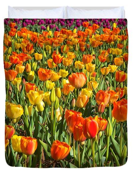Profusion Of Tulips Biltmore Estate Nc Duvet Cover