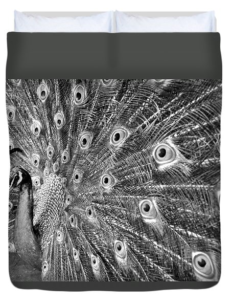 Proud Peacock Duvet Cover by Sean Davey