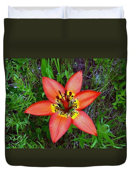 Duvet Cover featuring the photograph Prairie Lily - Lilium Philadelphicum by Blair Wainman